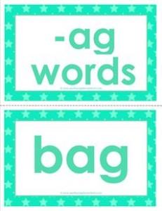 cvc word cards -ag words