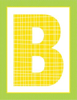 alphabet letter b - plaid and polka dot
