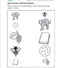 sorting worksheets for kindergarten a wellspring of worksheets. Black Bedroom Furniture Sets. Home Design Ideas