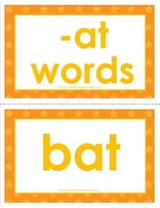 cvc word cards -at words
