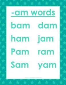 cvc words list -am words