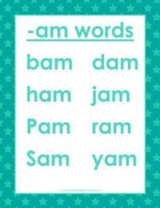 cvc words list -am words