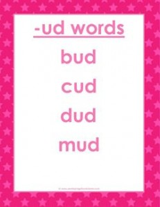 cvc words list -ud words