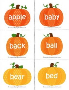 fall dolch sight word flashcards nouns