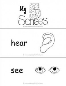 five senses vocabulary cards - b&w