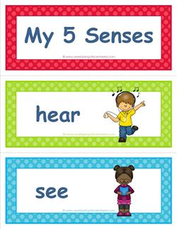 five senses vocabulary cards - children