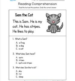 Kindergarten Reading Comprehension - Sam the Cat. Three multiple choice reading comprehension questions.