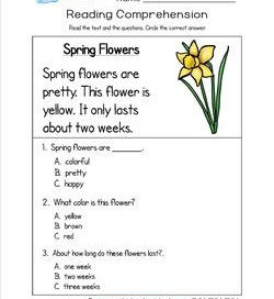 Kindergarten Reading Comprehension - Spring Flowers. Three multiple choice reading comprehension questions.