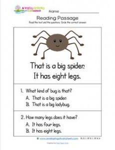 Kindergarten Reading Passages - Spider