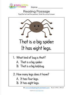 Kindergarten Reading Passages - Spider