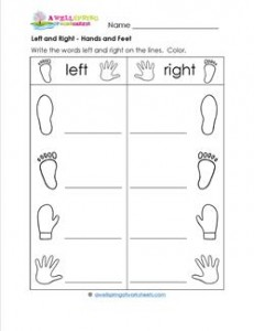 Left and Right - Hands and Feet - Position Words