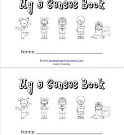 my five senses book - children