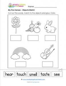 my five senses - object match