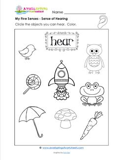 math worksheet : my five senses worksheets for preschoolers  k5 worksheets : 5 Senses Worksheets Kindergarten