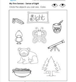 Five Senses Worksheets Circle The Objects. Five Senses Worksheets Circle The Objects. Worksheet. Sense Of Touch Worksheet At Mspartners.co