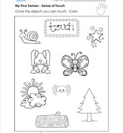 the senses the 5 senses worksheets booklets more. Black Bedroom Furniture Sets. Home Design Ideas