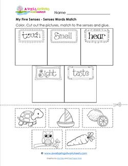 my five senses senses words match the words for the five senses are ...