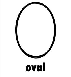 Image result for the shape oval