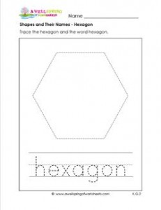 Shapes and their names hexagon shape worksheets shapes and their names hexagon ccuart