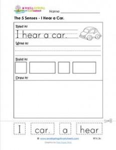 the 5 senses - i hear a car
