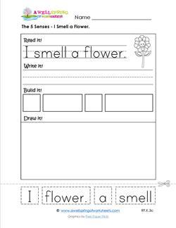 the 5 senses- i smell a flower