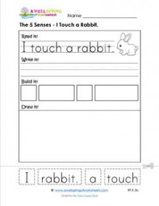 the 5 senses - i touch a rabbit