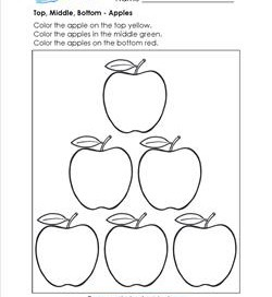 Top, Middle, Bottom - Apples - Positional Words