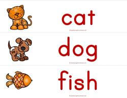 Print Awareness - How Many Letters - Animals Sorting